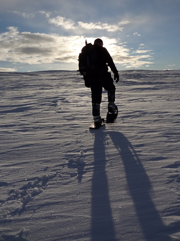 Snowshoeing in the Mounth - Silhouette