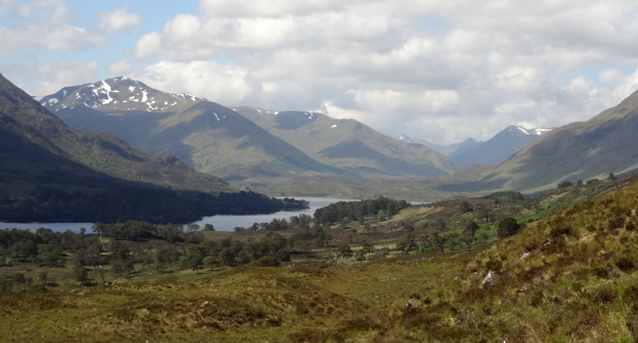 View West along Loch Affric
